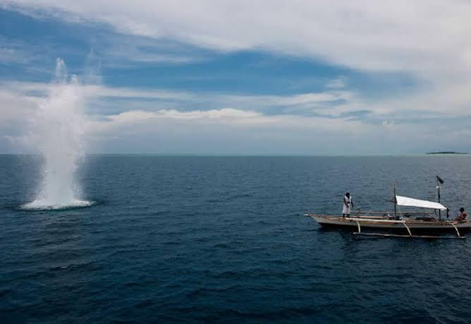 Bom Ikan Masih Marak di Sulbar