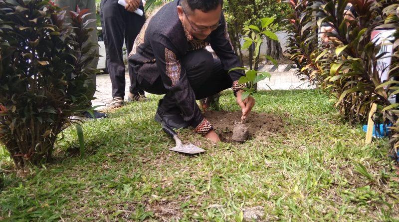 Wakil Bupati Mamuju :Tanam Pohon Untuk Sejuta Kehidupan