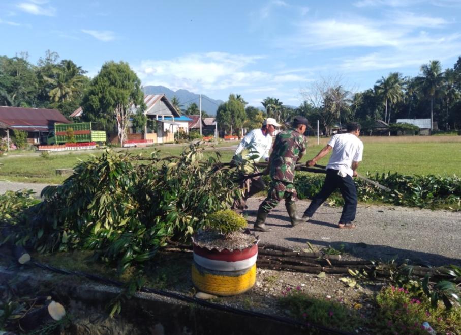 Babinsa Bersama Masyarakat Atasi pohon tumbang