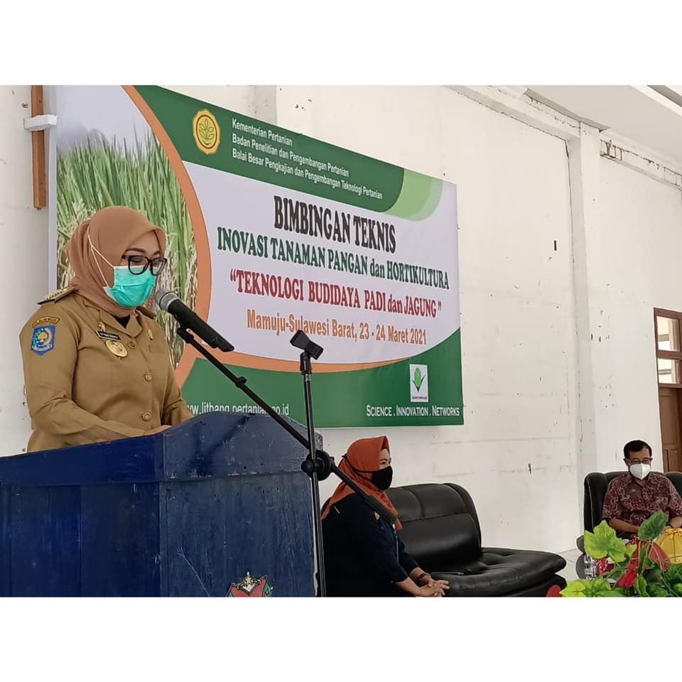 40 Petani Kalukku-Papalang Ikuti Bimtek Inovasi Tanaman Pangan Dan Hortikultura